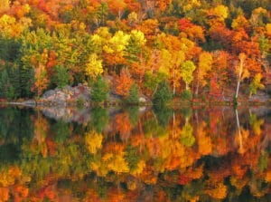 Fall Foliage Lakes Region New Hampshire