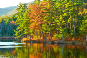 Fall foliage reflected in lake