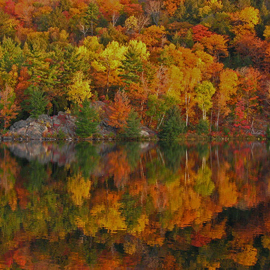 4 Season Guide to New Hampshire
